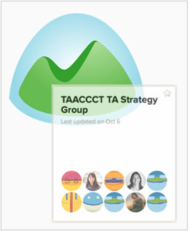 TAACCCT Technical Assistance Group