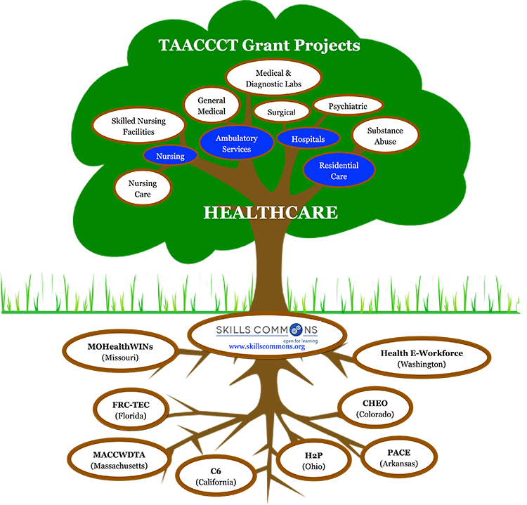 Select Grant Projects in Healthcare