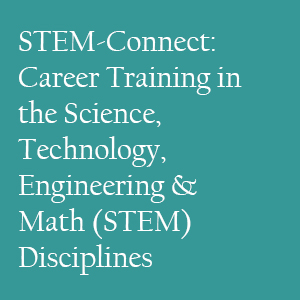 STEM-Connect: Career Training in the Science, Technology, Engineering & Math (STEM) Disciplines